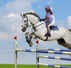 Bài tham dự #49 về Photoshop cho cuộc thi Horse jump photoshop