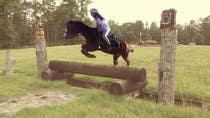 Bài tham dự #63 về Photoshop cho cuộc thi Horse jump photoshop