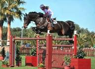 Bài tham dự #46 về Photoshop cho cuộc thi Horse jump photoshop