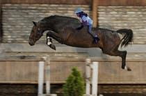 Bài tham dự #12 về Photoshop cho cuộc thi Horse jump photoshop