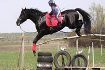 Bài tham dự #50 về Photoshop cho cuộc thi Horse jump photoshop