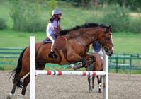 Bài tham dự #62 về Photoshop cho cuộc thi Horse jump photoshop
