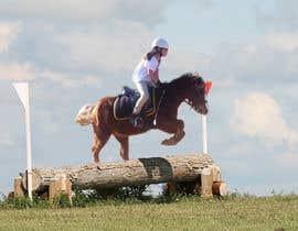 nº 35 pour Horse jump photoshop par paulogenargue