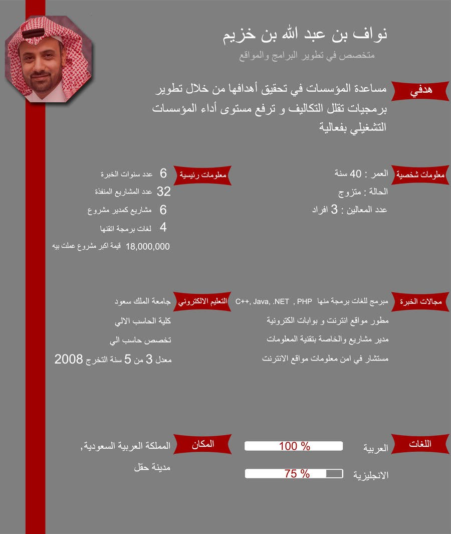 entry  24 by aishaelsayed95 for i need to buy 10 infographic cv template  6 in arabic languages
