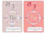 Graphic Design Inscrição do Concurso Nº44 para Graphic Design for Baby Tips