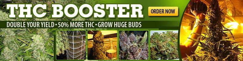 Bài tham dự cuộc thi #2 cho Design a banner for a marijuana fertilizer