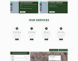 Nro 2 kilpailuun Re-Design a Website käyttäjältä timimalik