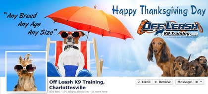 Graphic Design Contest Entry #18 for Thanksgiving Facebook Banner and Profile Pic