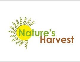 #76 для Logo Design for Nature's Harvest от aakruticreation