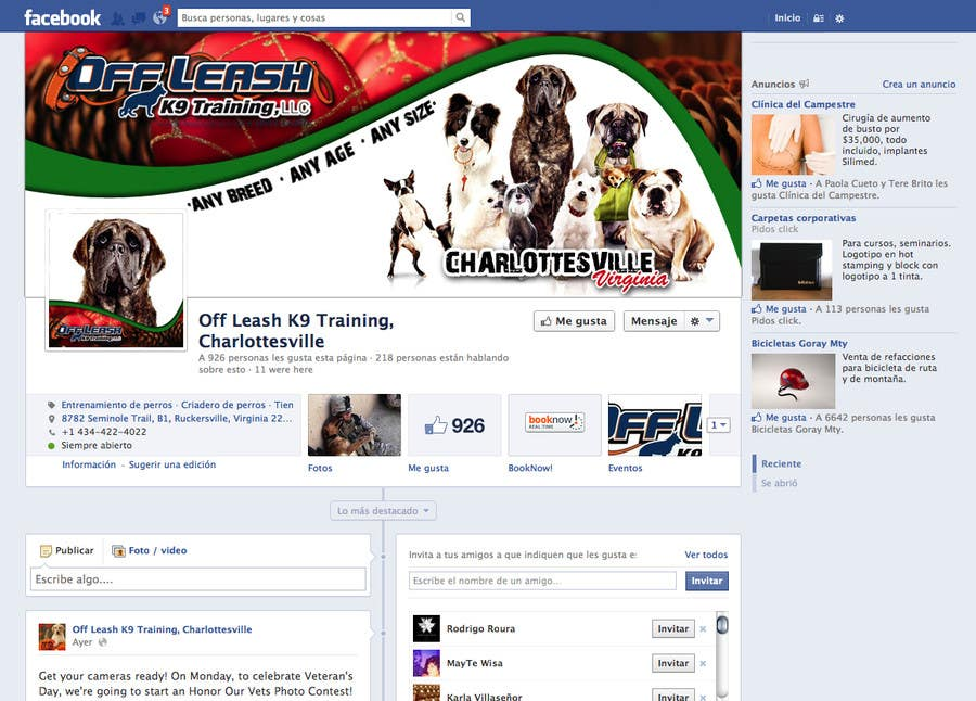 Proposition n°9 du concours Christmas Themed Facebook Banner and Profile Pic