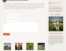 #53 for Website Design for Beefs Organization af walkingassassin