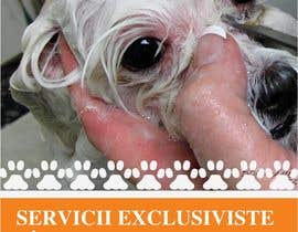 #40 for Pet Grooming Salon New Flyer Design af amcgabeykoon