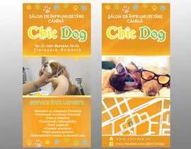 #12 for Pet Grooming Salon New Flyer Design af lardher