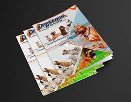 #9 for Design a Brochure for OLK9 Events with Package and Pricing Info by dister