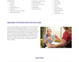 Nro 14 kilpailuun Website polish käyttäjältä kethketh