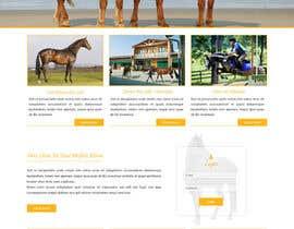 Nro 26 kilpailuun Design a horse searching website käyttäjältä ravinderss2014