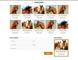 Nro 34 kilpailuun Design a horse searching website käyttäjältä princevenkat
