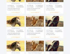 Nro 32 kilpailuun Design a horse searching website käyttäjältä phamtech211