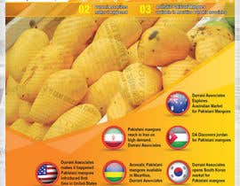 #37 cho Design a Brochure for Durrani Pak Horti Fresh Processing PVT Ltd bởi igraphicdesigner