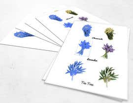 #10 cho Botanical illustrations: 3 flowers for product labels bởi SagarChitrakar