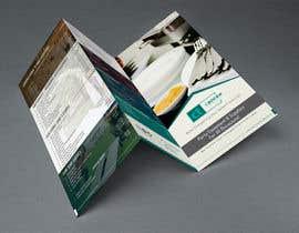 Nro 10 kilpailuun Design a Brochure for a Rental Company käyttäjältä arslanizaya