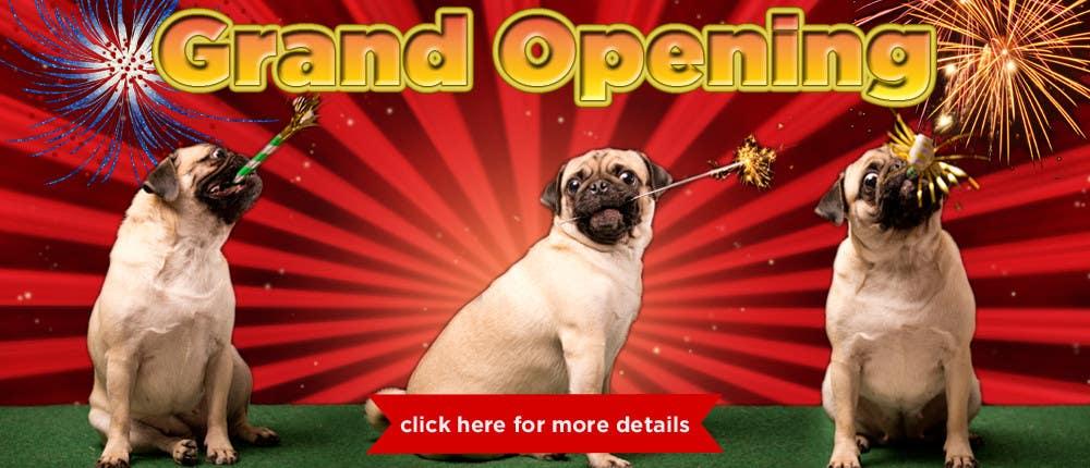 Design a Banner for grand opening için 8 numaralı Yarışma Girdisi