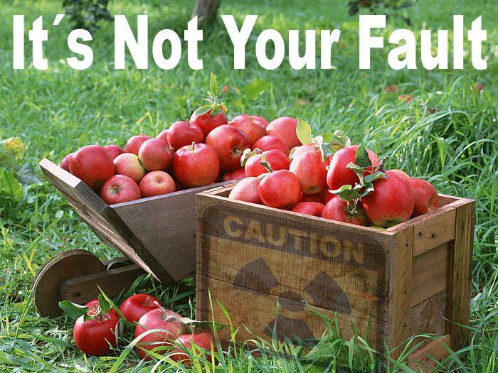 Penyertaan Peraduan #                                        10                                      untuk                                         Develop a Corporate Identity for It´s Not Your Fault