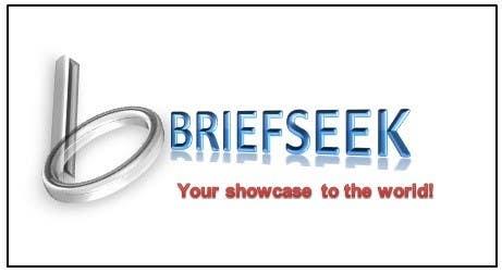 Proposition n°                                        844                                      du concours                                         Logo design for: Briefseek