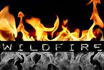 """Contest Entry #2 for Design a text Logo for """"Wildfire"""""""