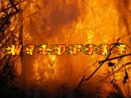 """Contest Entry #28 for Design a text Logo for """"Wildfire"""""""