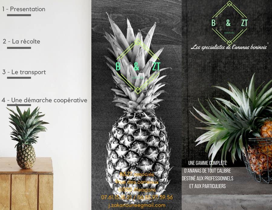Proposition n°7 du concours Design a brochure + logo