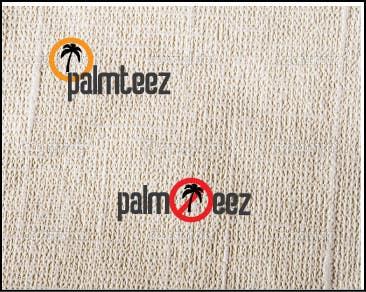 Penyertaan Peraduan #41 untuk Design a Logo for a T-Shirt Company