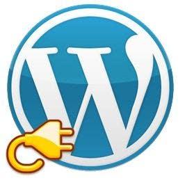 Penyertaan Peraduan #                                        21                                      untuk                                         I need someone who will make my wordpress website VERY fast