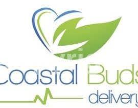jakebinnall tarafından Design a Logo for Medical Marijuana Delivery Service için no 16