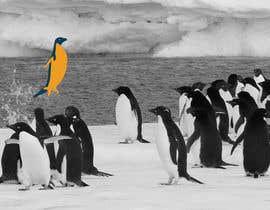 #1 cho Alter penguin image bởi dworker88