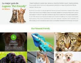 #2 para Design templates Wordpress de TemplateDigitale