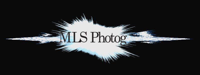 Inscrição nº                                         6                                      do Concurso para                                         Design a Logo for MLS Photog