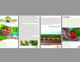maidang34님에 의한 brochure design for organic vegetables and fruits을(를) 위한 #2