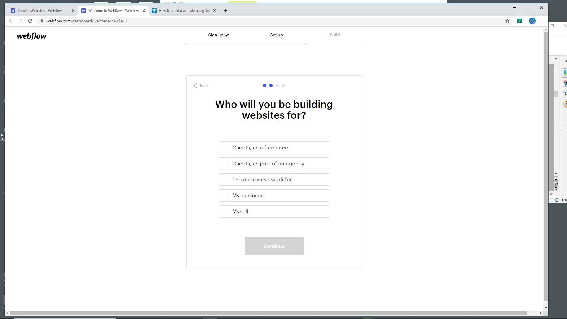 Webflow choose website