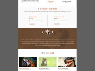 One of our web design from fiverr