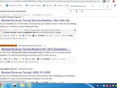 Top 2 Ranking on Google USA