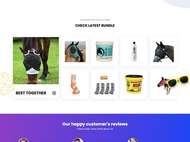 An Amazon affiliate website for selling pets items like Dog foods, cart foods, horse wears and so on.