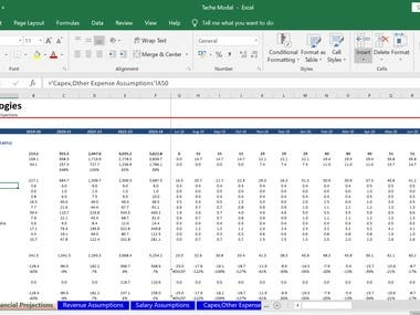 Snapshots Of A 5-Year Month-on-Month Financial Forecast Sheet Built For A Startup Client