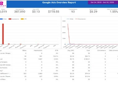 Google AdWords Conversation report, Which shows our successful campaign.  - Create Re marketing List for Display Ads - Support and Reporting,  - Marketing Growth etc.