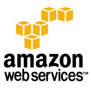 - AWS COmpute : EC2,ECS,EKS .... - AWS Databases : DocumentDB,Managed Redis,Mongo,ElasticSearch,SQL .... - AWS Load Balacing / Auto Scaling  - AWS Certifcate Manager - AWS vNets,Routes,DNS .... - File Storage : S3 , Glacier ... - AWS Serverless : Lambda. - Paas : AWS Elastic Beanstalk  - ....