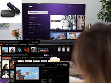 I worked on Roku TV/Android platforms.