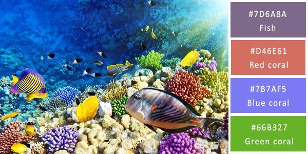 rich color combination - ocean