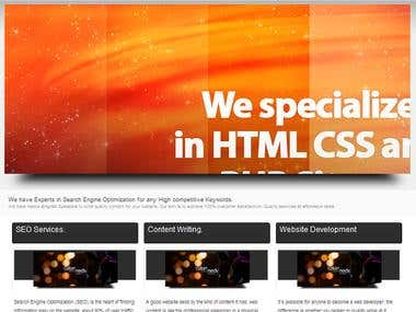 Custom made fully dynamic Web development  service website.