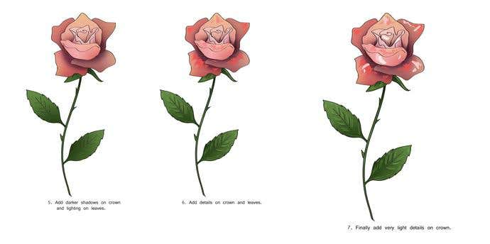 How To Draw A Rose In 7 Steps  - Image 4