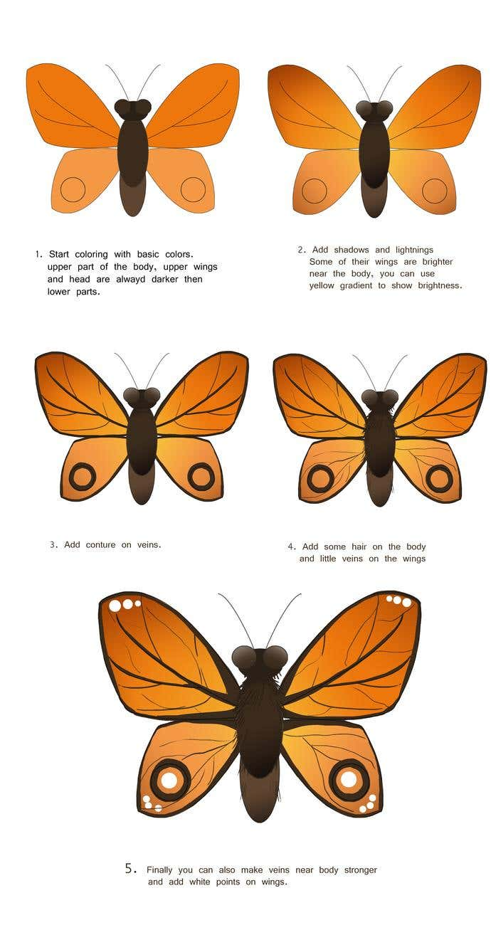 How To Draw A: Butterfly Drawing - Image 2